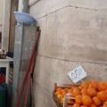 Tutte fuorilegge le bancarelle di orto-frutta all'aperto