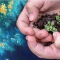 Giornata mondiale della Terra, dal Comune di Molfetta un vaso con terreno e semi alle scuole elementari