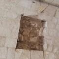 Minervini sull'edicola votiva deturpata: «Pronto un immediato restauro»