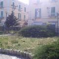 Via Baccarini, villetta abbandonata tra incuria e vandalismo: LE FOTO