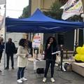 Il Movimento 5 Stelle torna in piazza a Molfetta
