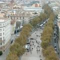 Attentato di Barcellona: presenti dei molfettesi in città