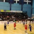 Basket, la Pavimaro Molfetta vince gara 3 e va in finale play-off