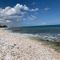 Piano coste a Molfetta, Confartigianato: «Positivo: porterà migliorie al litorale»