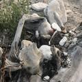Pericolo siringhe abbandonate e nascoste a Cala San Giacomo?