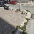 Via Papa Montini, divelta la segnaletica stradale. Vandalismo o assenza di manutenzione?