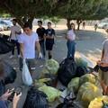 Le associazioni Agesci e 2hands raccolgono altri 100 chili di rifiuti a Molfetta