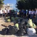 A Molfetta raccolti 581 chili di rifiuti da giovani volontari