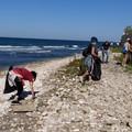 """Oltre 20 cittadini ripuliscono la spiaggia pubblica  """"la Bussola """""""