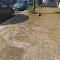 Manca la pulizia delle strade nel zona 167 di Molfetta?