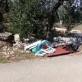 Le campagne di Molfetta sempre colme di rifiuti