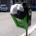 """""""Strada alberata """": quale lo stato di igiene e sicurezza pubblica?"""