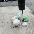 Rifiuti in strada, la segnalazione di un lettore: «Regna l'indifferenza»
