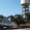 A fuoco quattro ettari di terra in via Olivetti