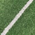 Coppa Puglia, la Virtus Molfetta rinuncia alla sfida contro la Virtus Bisceglie
