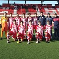 La Molfetta Calcio chiude al secondo posto il campionato juniores