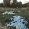 """Il Comune di Molfetta ascolta i residenti, ecco il  """"nuovo """" centro di raccolta dei rifiuti"""