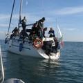 Tartarughe marine: aumentano gli arrivi al Centro di Recupero di Molfetta