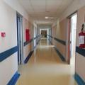 """Paziente  """"falso positivo """" al Covid. Cosa è successo nell'ospedale di Molfetta"""