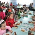Mensa scolastica a Molfetta, cosa cambia? Le risposte a tutte le domande dei genitori
