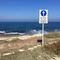 Nuovo mercato settimanale in riva al mare?