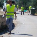 All'Asm 70 mila Euro per la pulizia straordinaria di Molfetta.