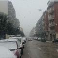 Neve in arrivo anche su Molfetta?