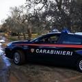 Rubano olive, ma un agricoltore li vede e chiama il 112: arrestati