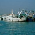 Fondi alla marineria, Sinistra Italiana: «Grazie al nostro impegno nel Decreto Rilancio»