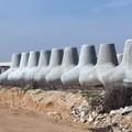 """Un """"faro"""" per l'intero territorio: il porto commerciale di Molfetta diventa realtà"""