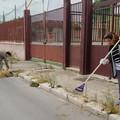 Erbacce e rifiuti attorno alla parrocchia Santa Famiglia. I fedeli ripuliscono i marciapiedi