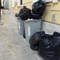 Feci e urine nei pressi della scuola Battisti, un genitore: «Punire i trasgressori»