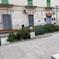 Ritardi nella pulizia di Piazza Principe di Napoli?