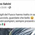 Salvini si complimenta con i Vigili del Fuoco di Molfetta per il salvataggio del cucciolo Fire