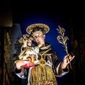 Molfetta celebra Sant'Antonio. Le origini della festa in città
