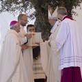 Papa Francesco e la Madonna dei Martiri:l'omaggio del Pontefice alla Patrona