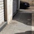 Incuria nel centro di Molfetta? «Escrementi di colombi sui marciapiedi»