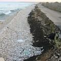 La denuncia della Lac Puglia: degrado a Torre Calderina