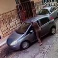 Ruba auto, proprietario trascinato sull'asfalto: preso pregiudicato 22enne