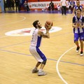 Basket, Serie D: la Virtus Molfetta piega Foggia