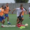 Coppa Puglia, Virtus Molfetta nel girone con Città di Trani e Virtus Bisceglie