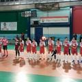 Il Futsal Molfetta vince contro la capolista Noci