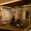 Parcheggi innovativi per le moto lungo le strade di Molfetta?