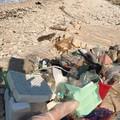 Rifiuti lasciati nei pressi di Torre Calderina: la raccolta di due cittadini