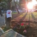 La rinascita di Piazza 1° Maggio grazie all'associazione Symposium di Molfetta