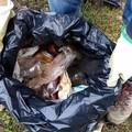Ancora rifiuti raccolti nel parco di Lama Martina