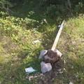 Ancora atti di vandalismo nel parco di Lama Martina a Molfetta