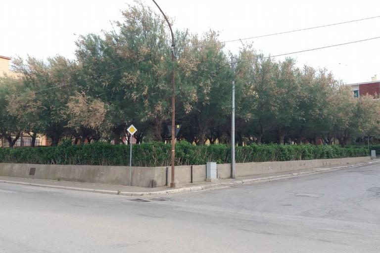 Giardinetti di via Giovinazzo