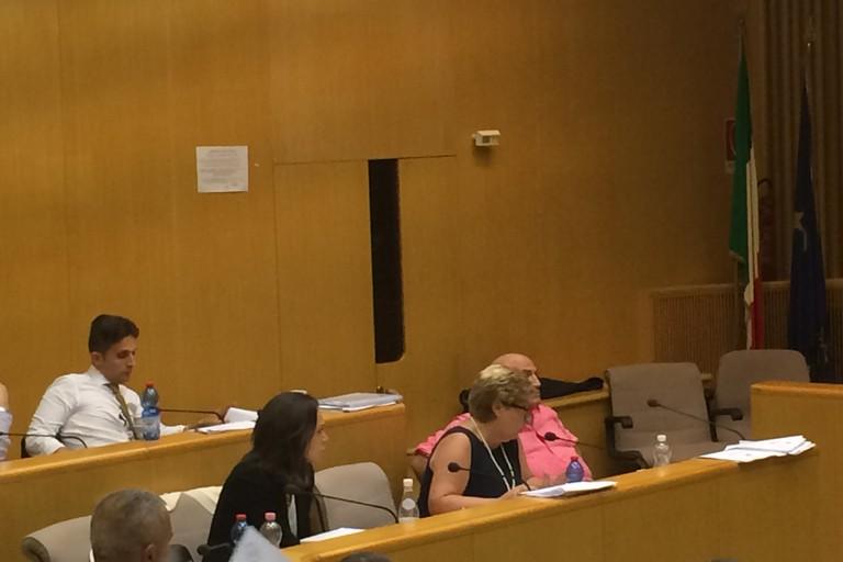 Isa de Bari in Consiglio comunale