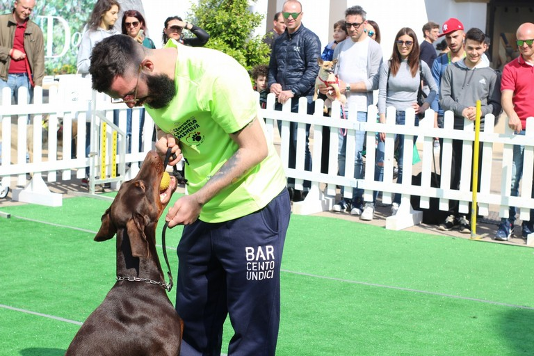 """""""I love my dog"""": che festa al Puglia Outlet Village! - LE IMMAGINI"""